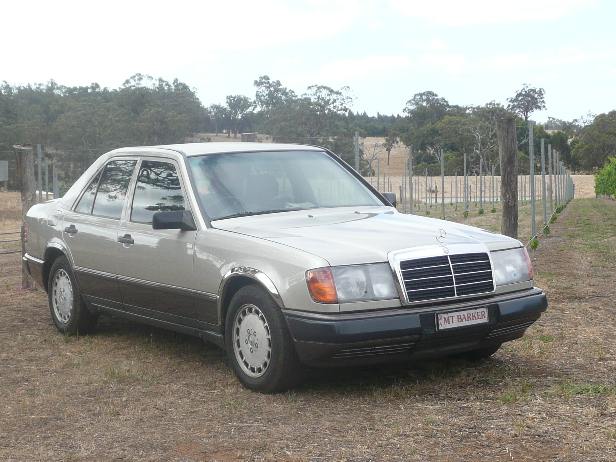 Cars for sale wanted mercedes benz car club of western for Mercedes benz w124 230e workshop manual