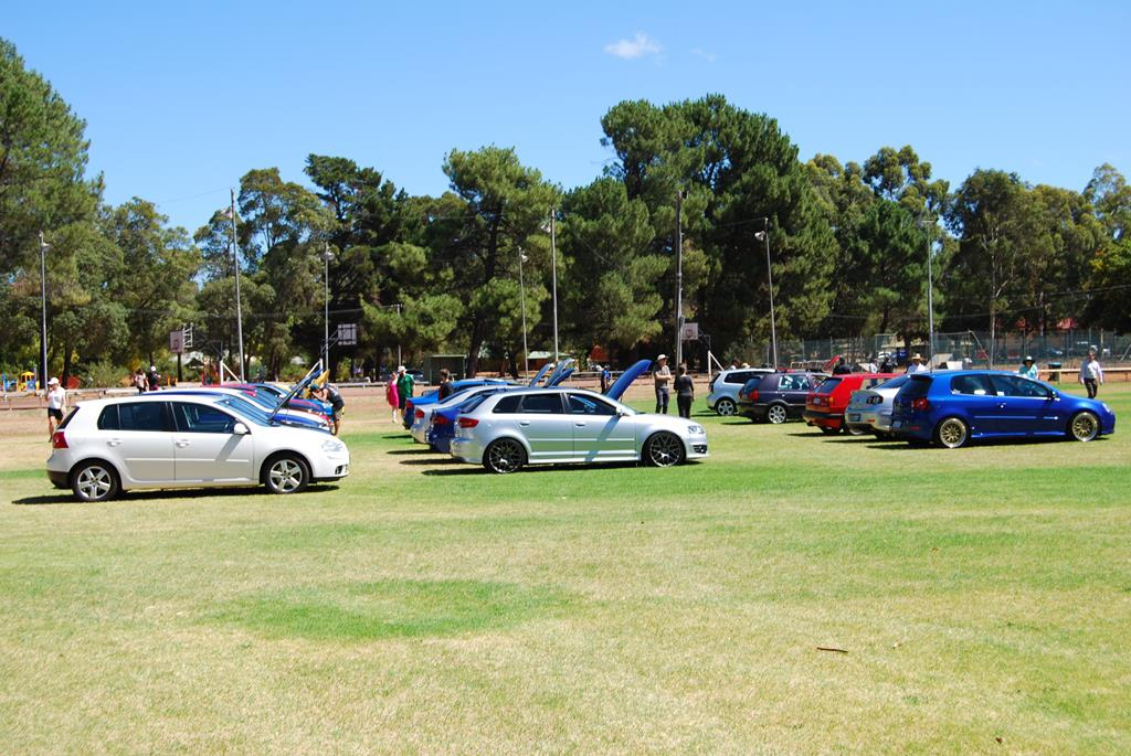 VWs and Audis line up