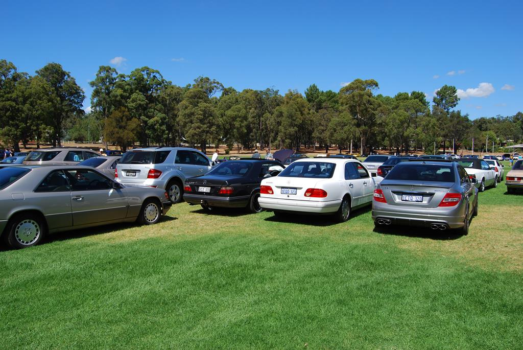 Just some of the many Mercedes-Benz on display in Dwellingup